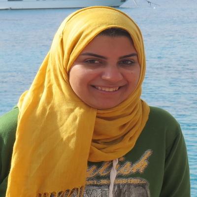 Sarah Shokr